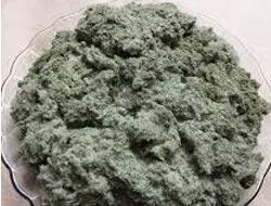 Bán bột lá khúc nguyên chất tại Hà Nội - Tp HCM